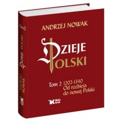 Dzieje Polski. Tom 2